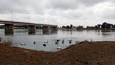 جولة لكاميرا بيسان اف ام على ضفاف نهر الفرات في مدينة الرقة (فيديو)
