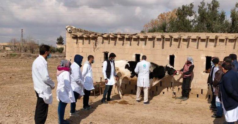 اختتام دورة تدريبية بيطرية في ريف دير الزور الغربي